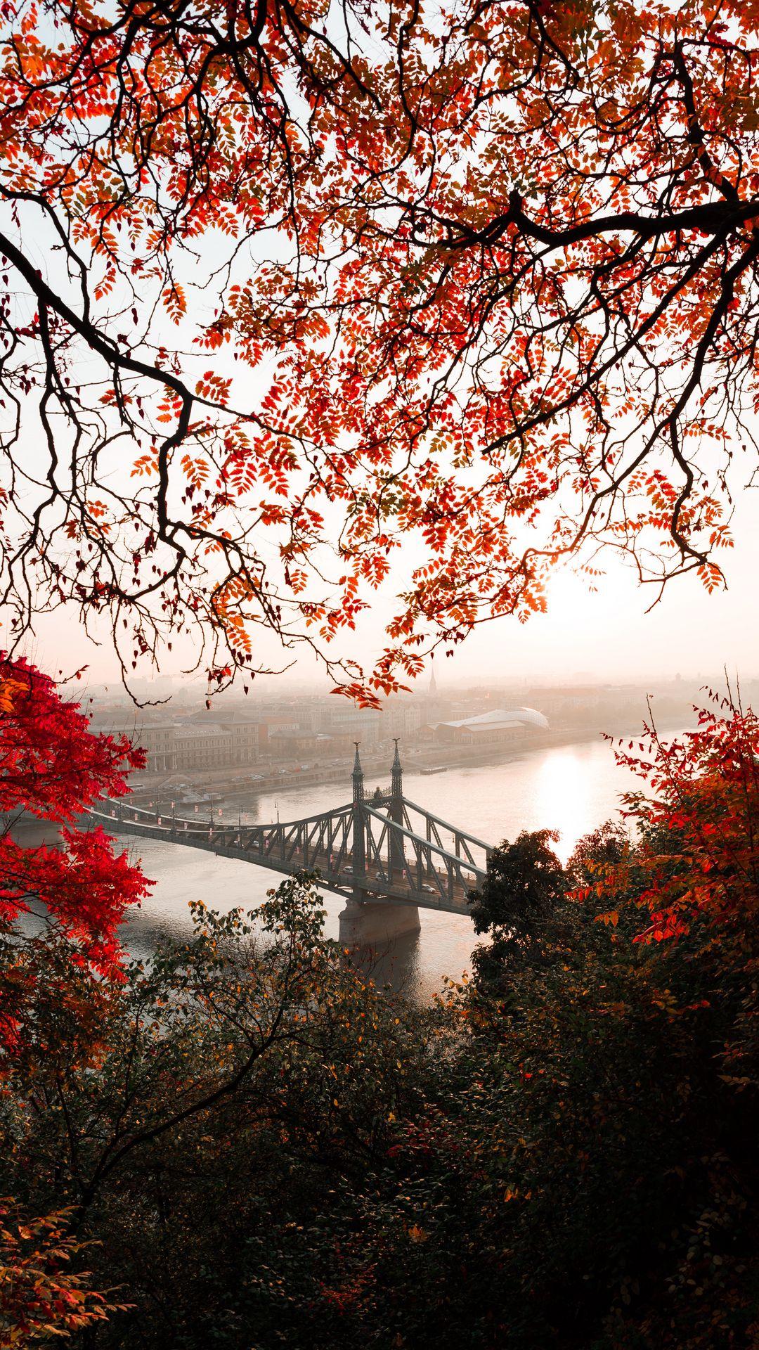 1080x1920 Wallpaper bridge, autumn, city, citadella, budapest, hungary