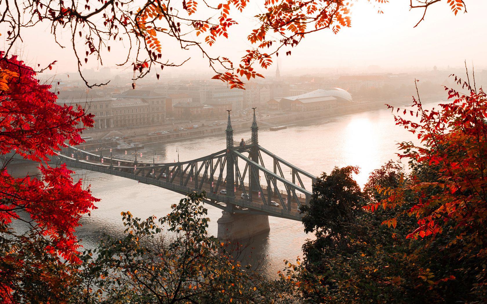 1680x1050 Wallpaper bridge, autumn, city, citadella, budapest, hungary