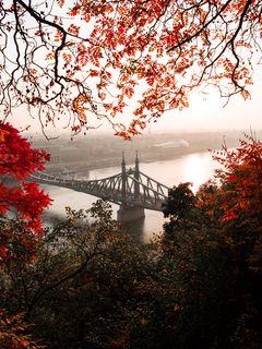 240x320 Wallpaper bridge, autumn, city, citadella, budapest, hungary
