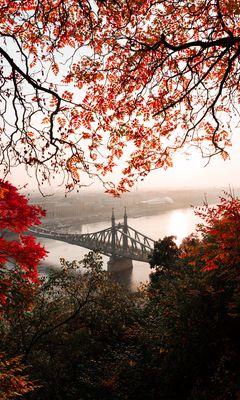 240x400 Wallpaper bridge, autumn, city, citadella, budapest, hungary