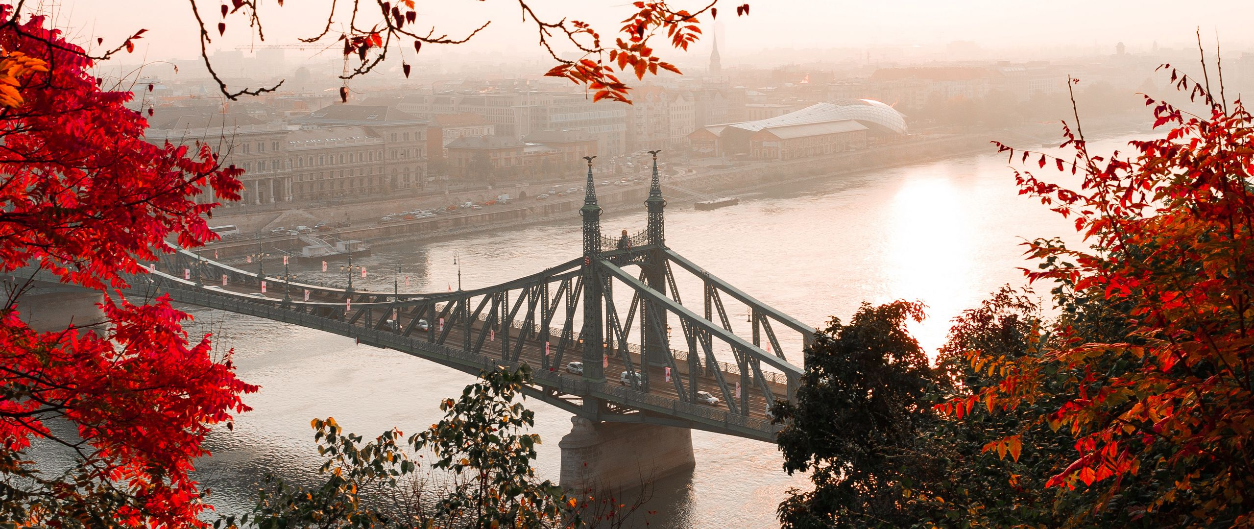 2560x1080 Wallpaper bridge, autumn, city, citadella, budapest, hungary