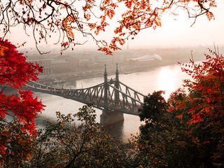 320x240 Wallpaper bridge, autumn, city, citadella, budapest, hungary