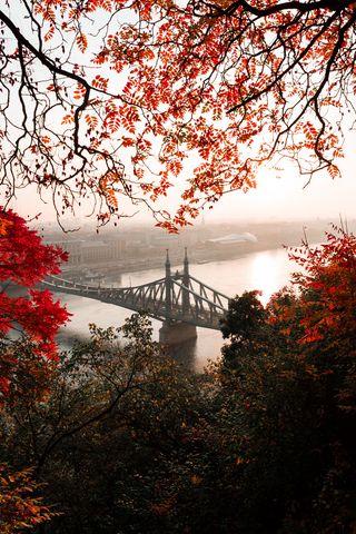 320x480 Wallpaper bridge, autumn, city, citadella, budapest, hungary