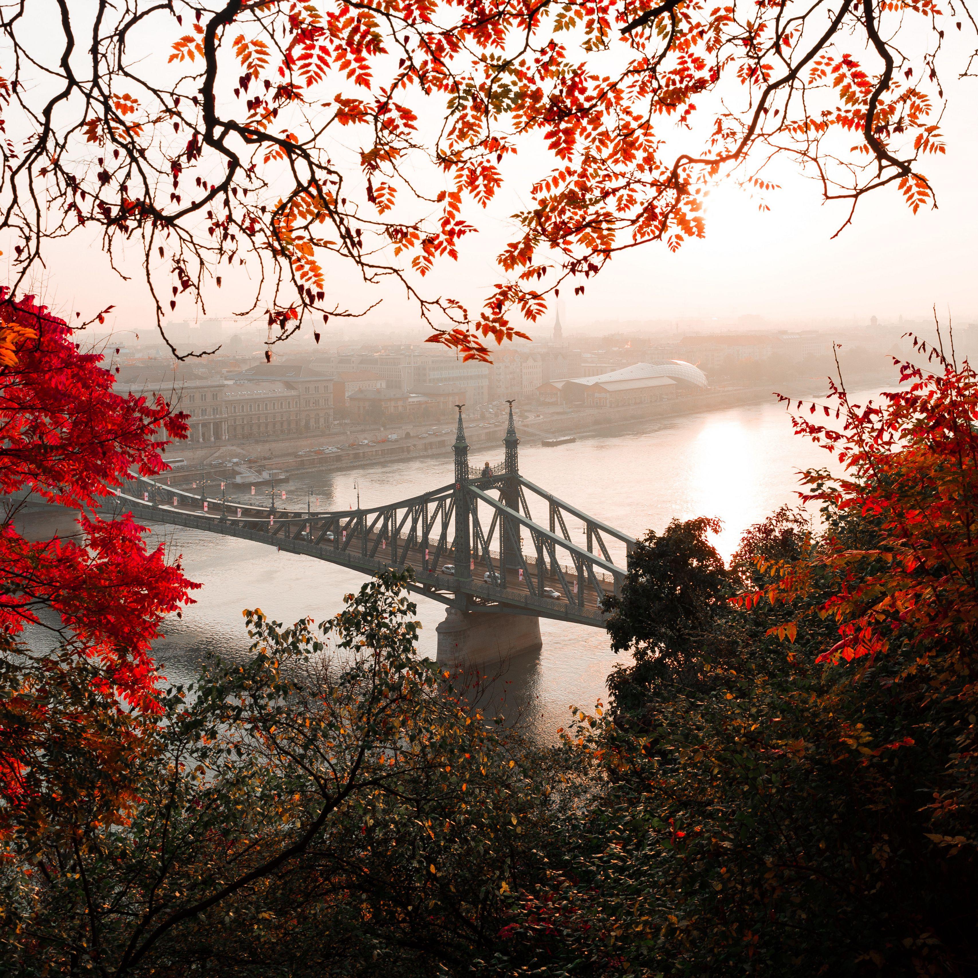 3415x3415 Wallpaper bridge, autumn, city, citadella, budapest, hungary