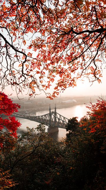 360x640 Wallpaper bridge, autumn, city, citadella, budapest, hungary