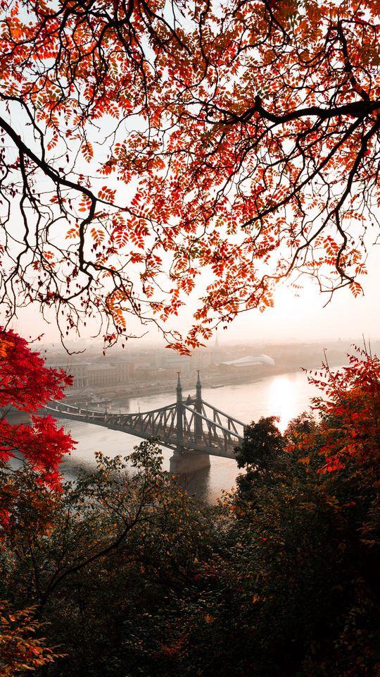 540x960 Wallpaper bridge, autumn, city, citadella, budapest, hungary