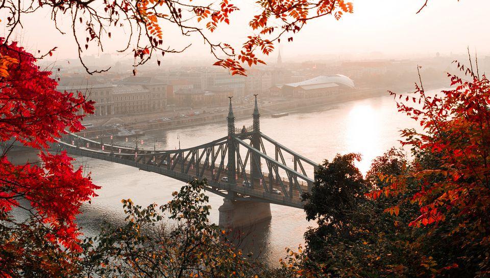 960x544 Wallpaper bridge, autumn, city, citadella, budapest, hungary
