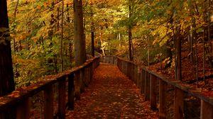 Preview wallpaper bridge, forest, leaves, autumn, landscape