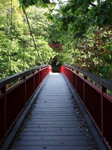Preview wallpaper bridge, trees, forest, nature, greenery
