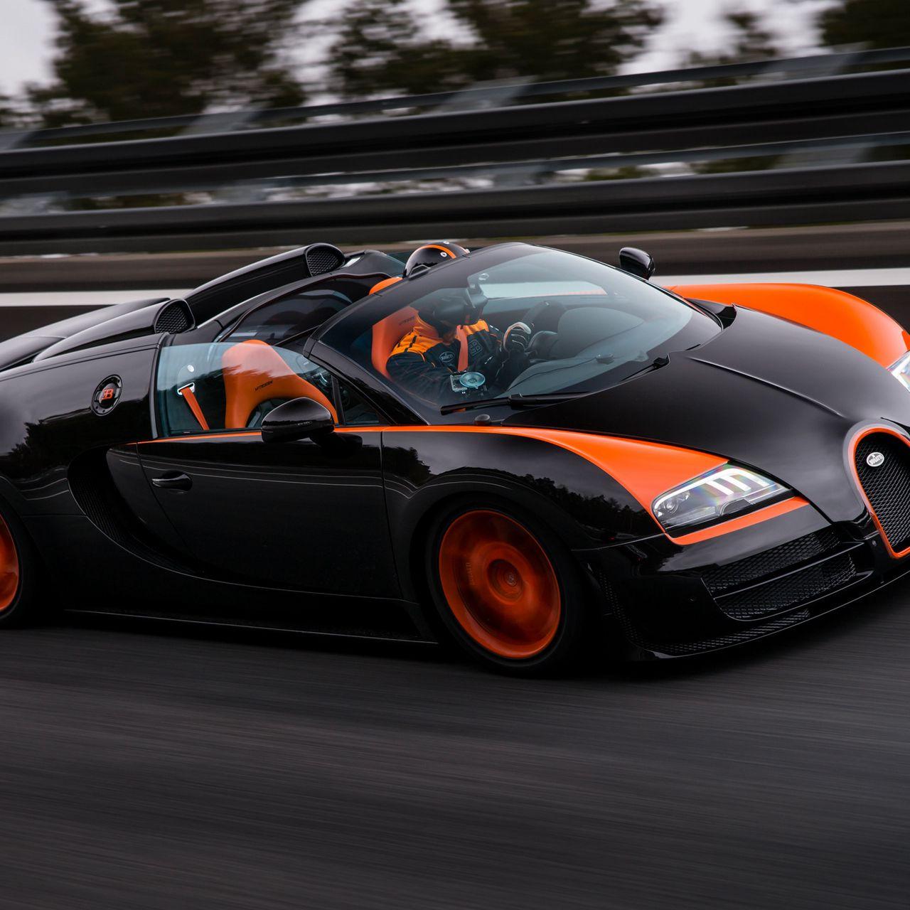 1280x1280 Wallpaper bugatti, grand sport, roadster, vitesse, wrc edition, veyron