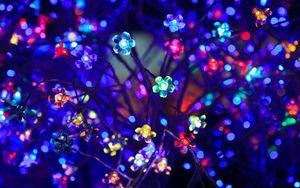 Preview wallpaper bulbs, flowers, neon, light, lighting, glare, bokeh, colorful