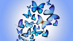 Preview wallpaper butterfly, colorful, blue, drawing, art, beautiful