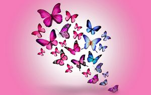 Preview wallpaper butterfly, drawing, flying, colorful, background, pink