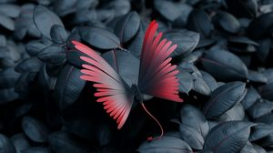 Preview wallpaper butterfly, leaves, wings, contrast