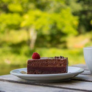 Preview wallpaper cake, raspberry, berry, chocolate, dessert