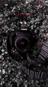 Preview wallpaper camera, lens, strap, plant, bush