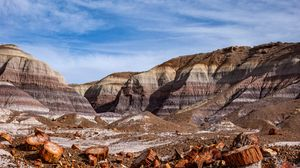 Preview wallpaper canyon, rocks, logs, nature, landscape