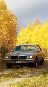 Preview wallpaper car, gray, trees, autumn, yellow