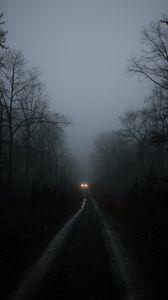 Preview wallpaper car, lights, fog, trees, road