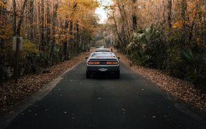 Preview wallpaper car, road, asphalt, trees, autumn