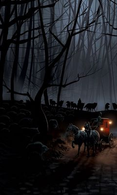 240x400 Wallpaper carriage, wood, night, wolves, flight