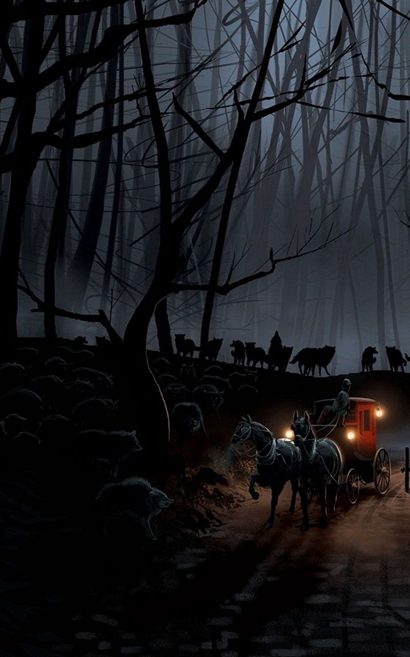 800x1280 Wallpaper carriage, wood, night, wolves, flight