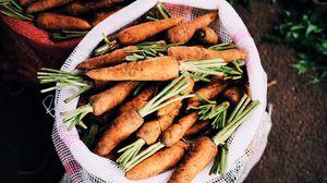 Preview wallpaper carrot, bag, vegetables