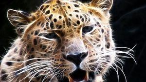 Preview wallpaper cat, big, face, light, lines