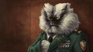 Preview wallpaper cat, fluffy, jacket, military