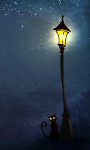 Preview wallpaper cat, night, lights