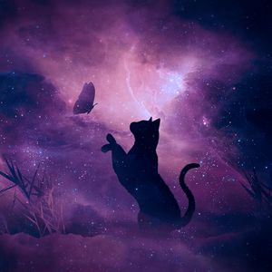Preview wallpaper cat, silhouette, butterfly, starry sky, galaxy, stars, shine