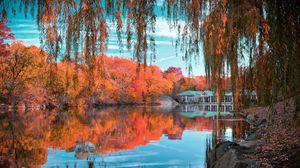 Preview wallpaper central park, new york, autumn, beautiful landscape