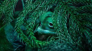 Preview wallpaper chameleon, reptile, mimicry, plant