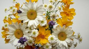 Preview wallpaper chamomile, big, small, flowers, bouquets, composition