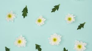 Preview wallpaper chamomile, leaves, minimalism, pastel