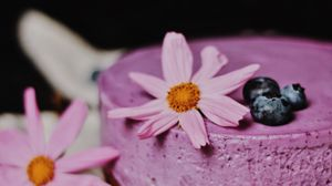 Preview wallpaper cheesecake, pie, pastries, blueberries, flowers
