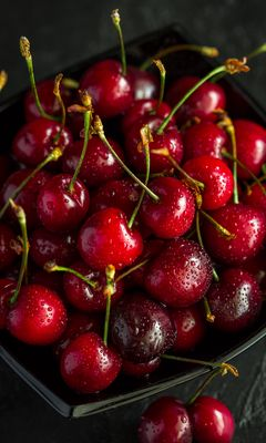 240x400 Wallpaper cherry, ripe, wet, berries, harvest, red, drops