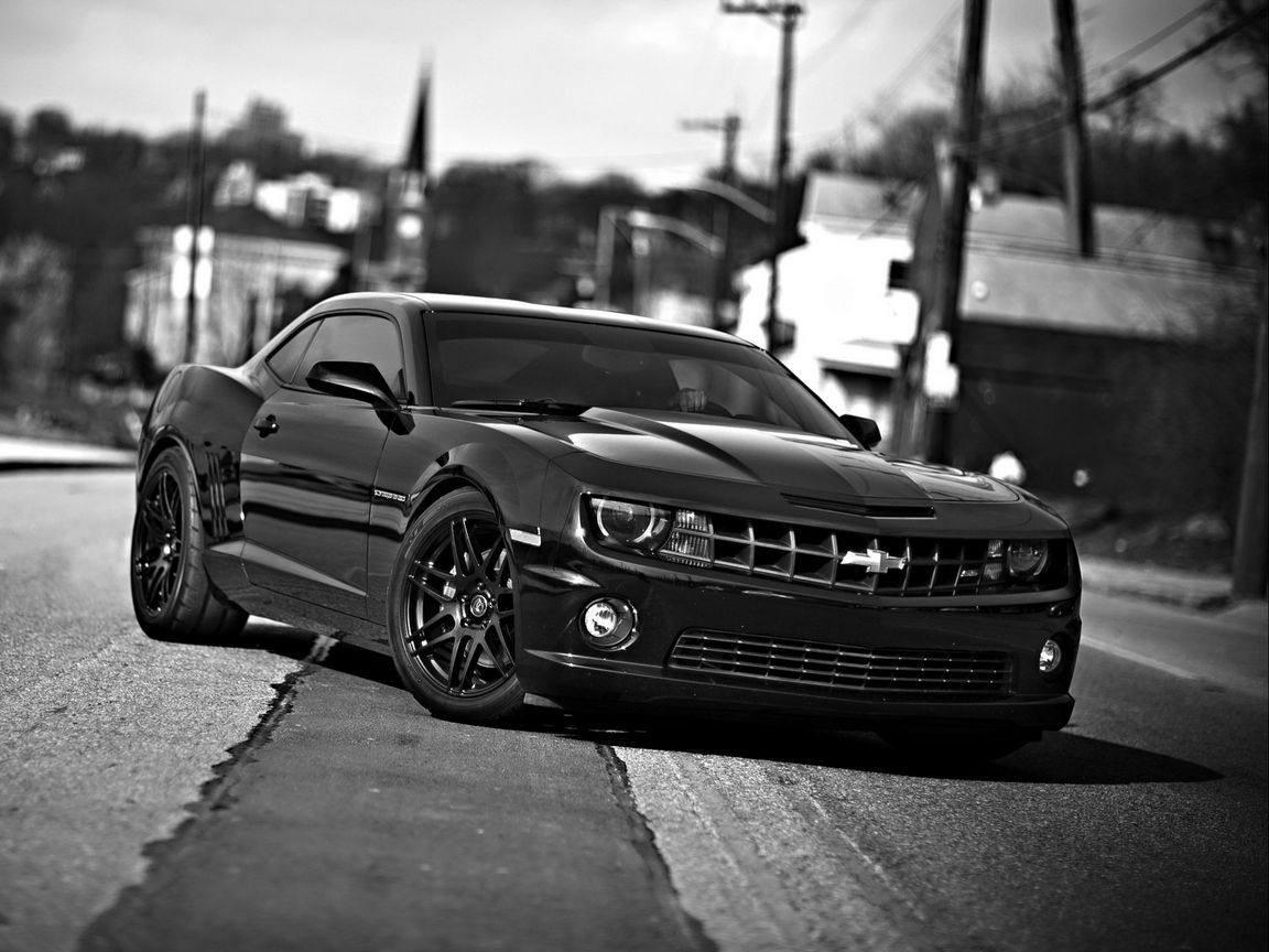1152x864 Wallpaper chevrolet camaro, chevrolet, cars, front view, black white