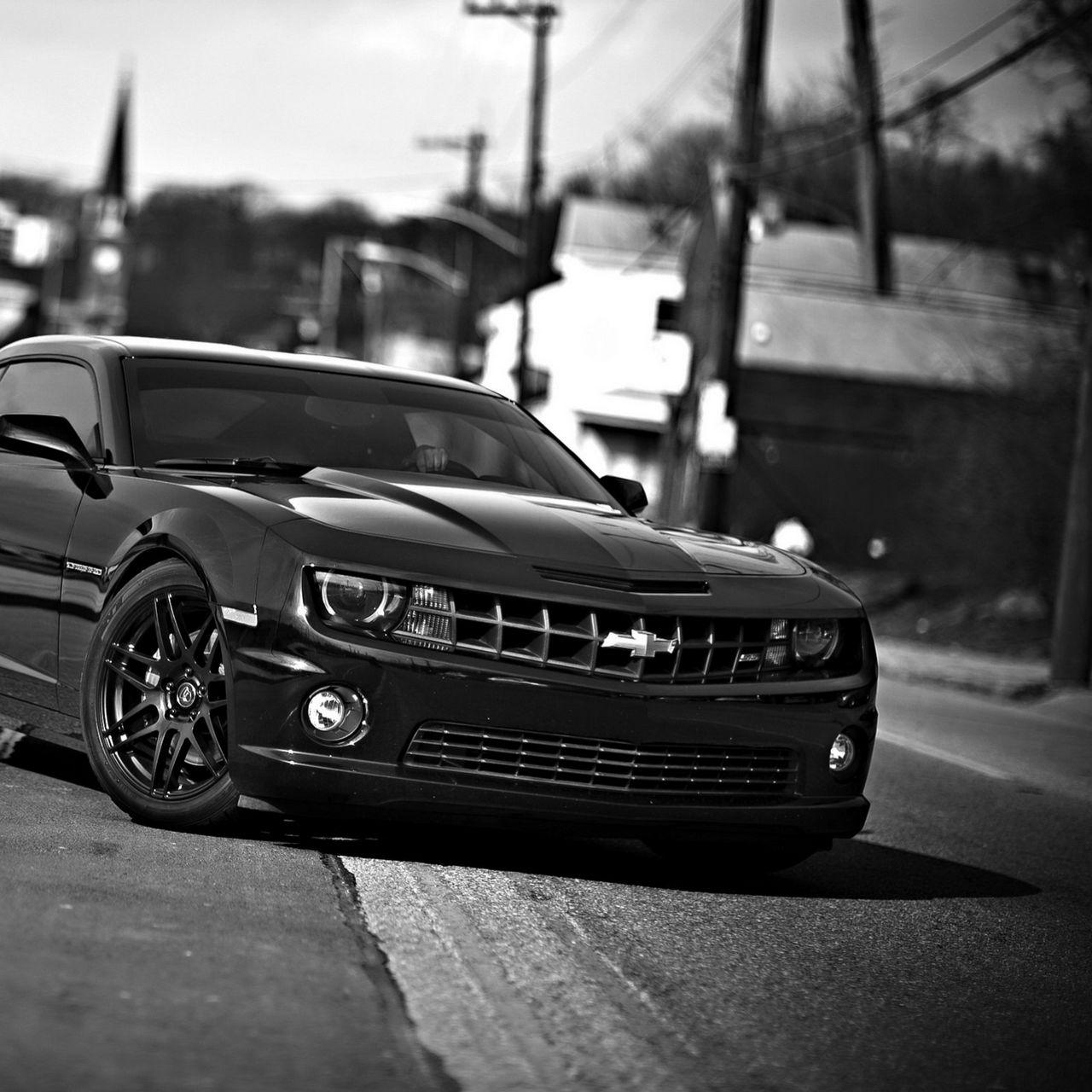 1280x1280 Wallpaper chevrolet camaro, chevrolet, cars, front view, black white