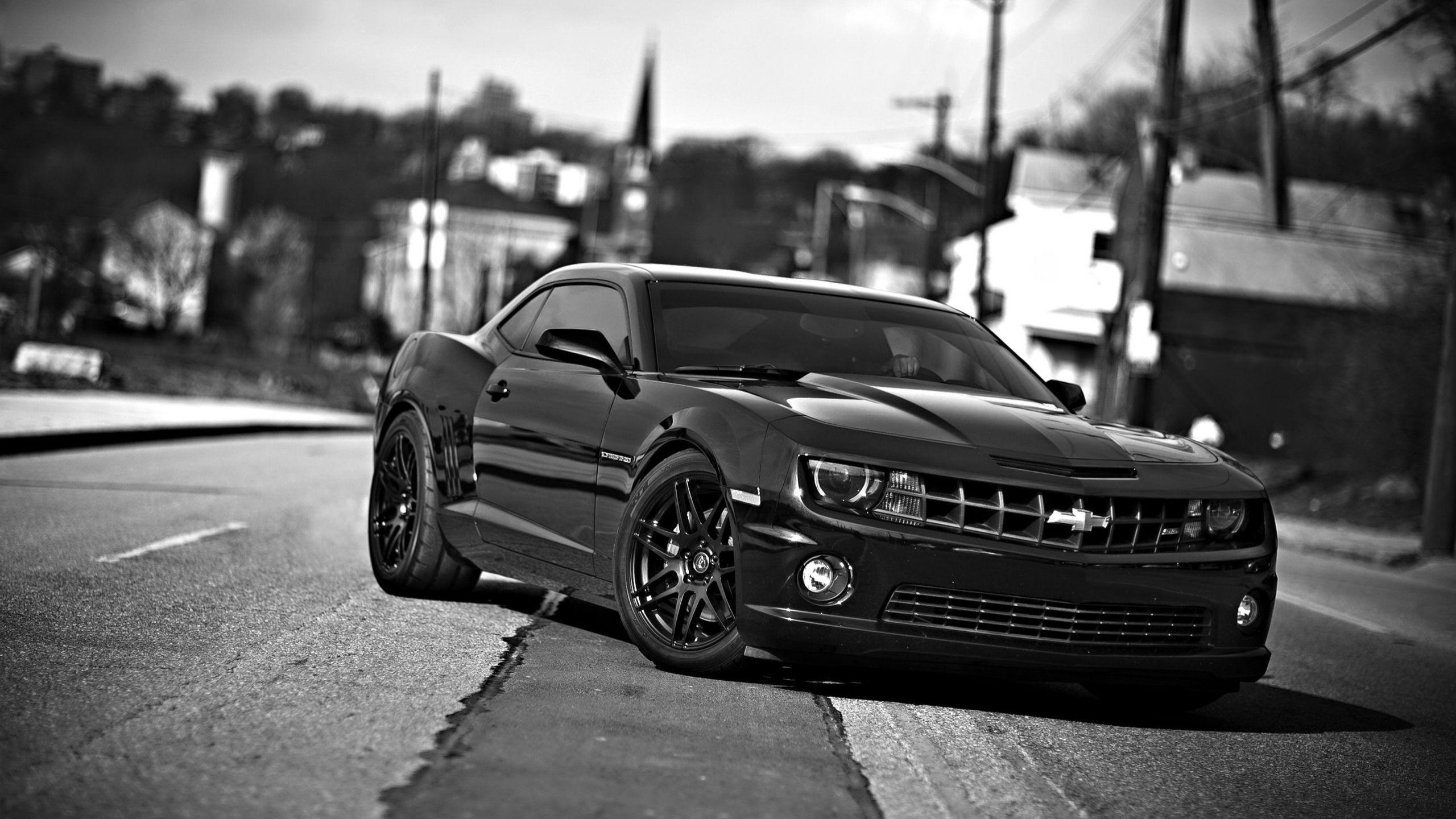 2560x1440 Wallpaper chevrolet camaro, chevrolet, cars, front view, black white