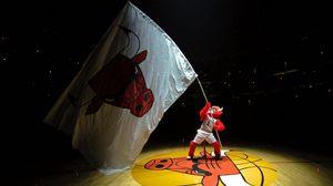 Preview wallpaper chicago bulls, basketball, emblem, symbol, flag, fan