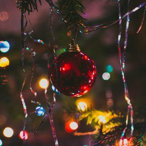 Preview wallpaper christmas tree, ball, fir, new year, christmas