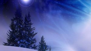 Preview wallpaper christmas trees, snow, winter, midnight, blizzard