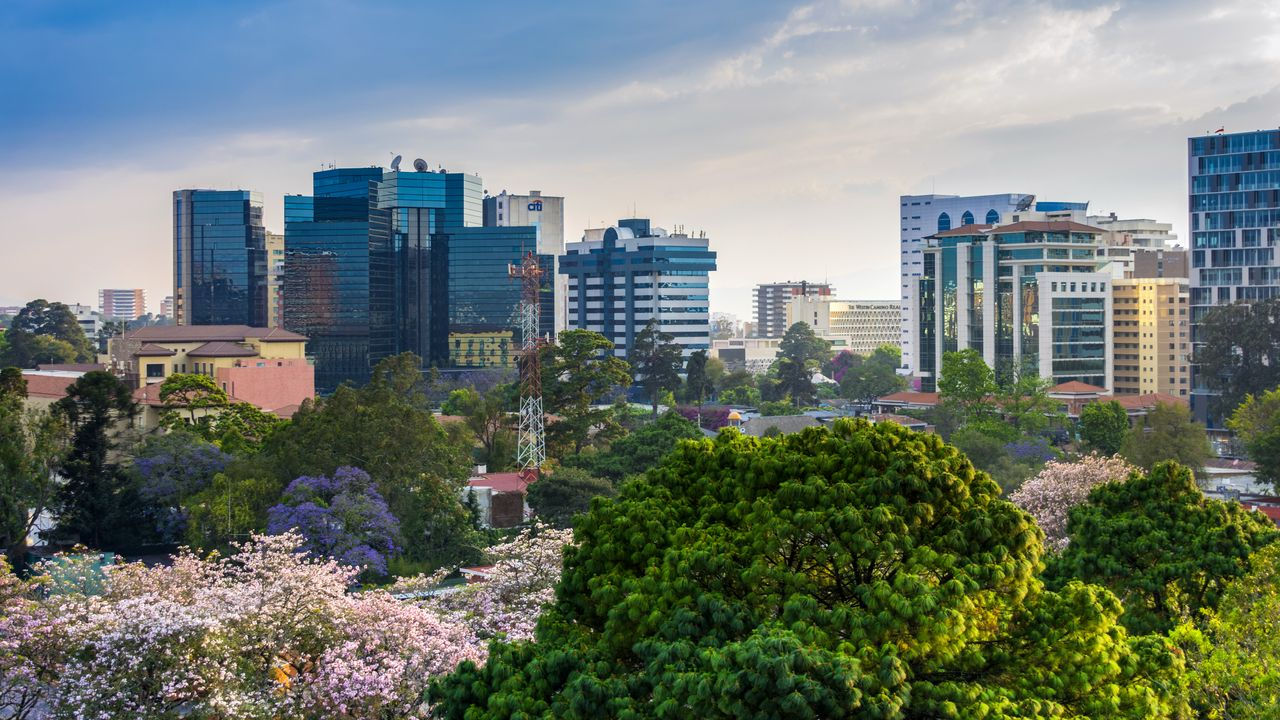 Wallpapercity,buildings,tower,trees,aerialview高清壁纸免费下载