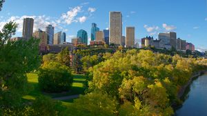 Preview wallpaper city, buildings, trees, autumn, aerial view