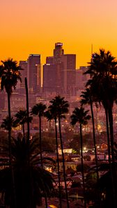Preview wallpaper city, palm trees, sunset, buildings, skyscrapers, los angeles