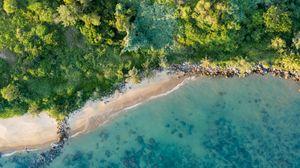 Preview wallpaper coast, beach, aerial view, sea, trees, vegetation
