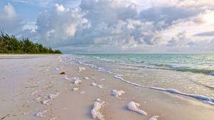 Preview wallpaper coast, green, surf, sea, sand, nature, foam