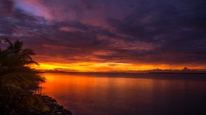 Preview wallpaper coast, palm trees, sea, sunset, dark