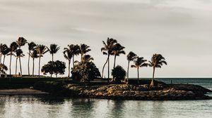 Preview wallpaper coast, sea, palm trees, trees, landscape